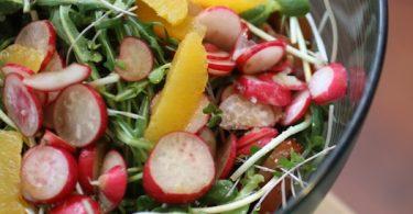 veg_salad