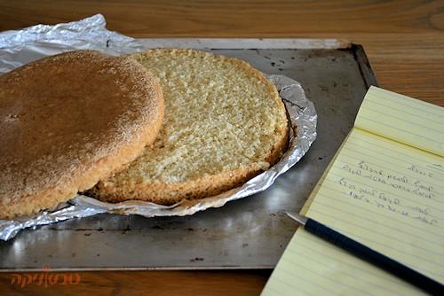 עוגת ספוג בסיסית